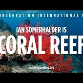 Nature Is Speaking - Ian Somerhalder is Coral Reef | Conservation International (CI)