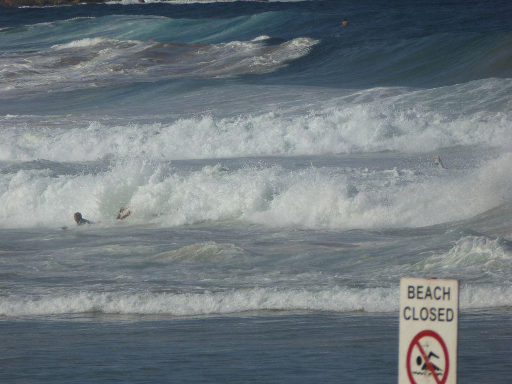 19 – Sortie en ferry pour aller à Manly Beach