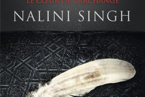Chasseuse de Vampires tome 9 : Le coeur de l'Archange de Nalini SINGH