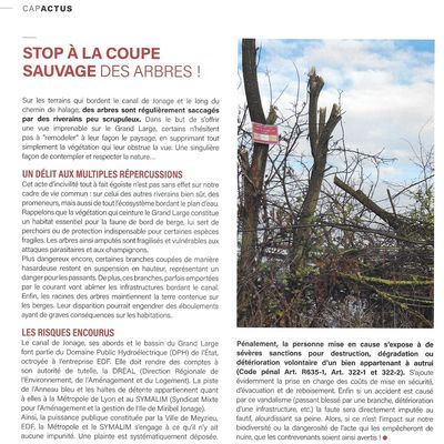 CVLM - Article Cap Meyzieu - Grand Large