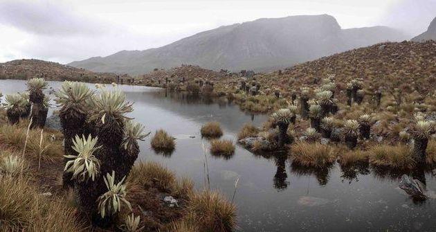 23/08 Colombie- Sierra Nevada del Cocuy
