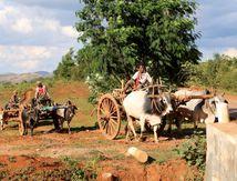 """Birmanie, jour 4 """"retour vers le passé"""" avec enfin nos vélos. Première série de photos"""