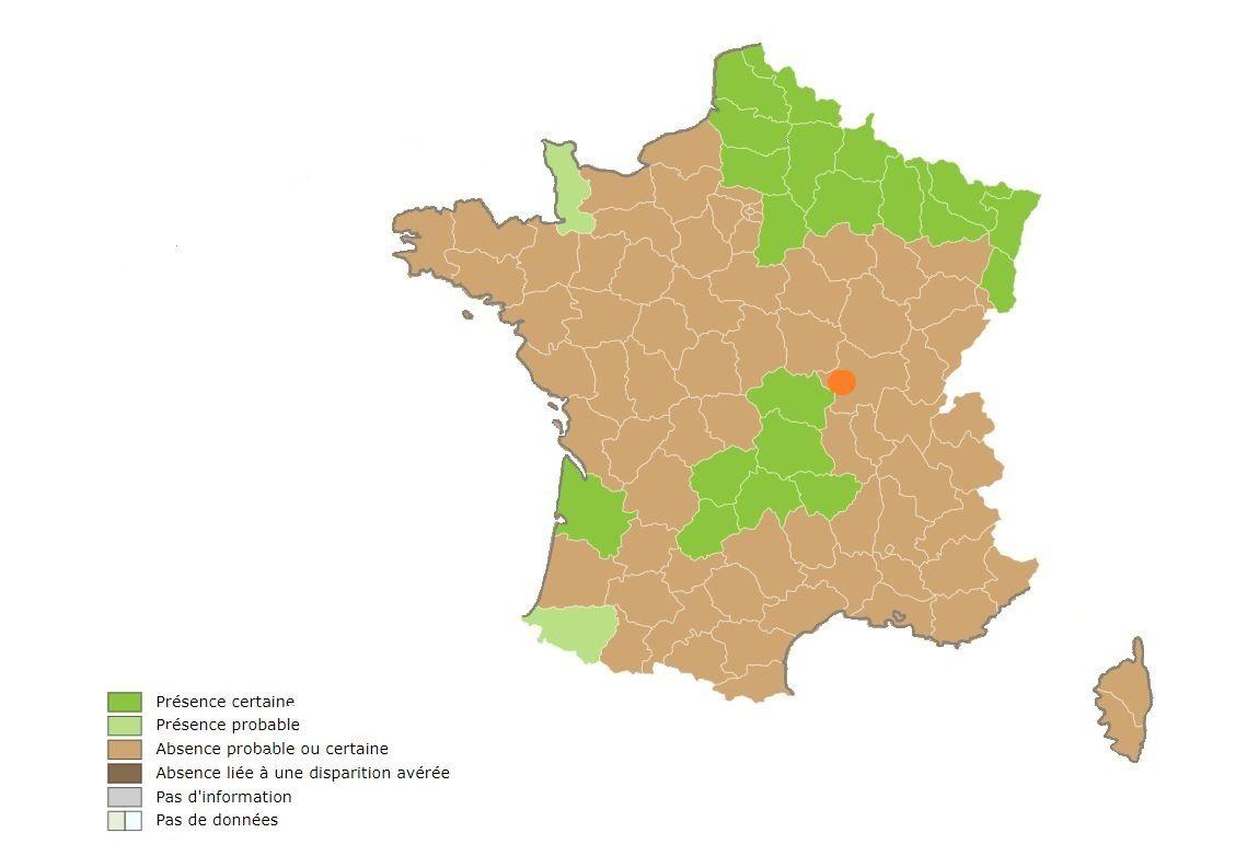 Situation du jardin ajoutée sur la carte de présence du raton laveur de l'INPN (établie par Audrey Savouré-Soubelet et Patrick HAFFNER)