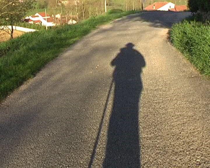 Ombres du chemin