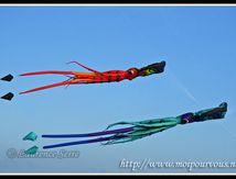 Cervolix 2010 au plateau de Gervogie (63) - Les cerfs volants ...