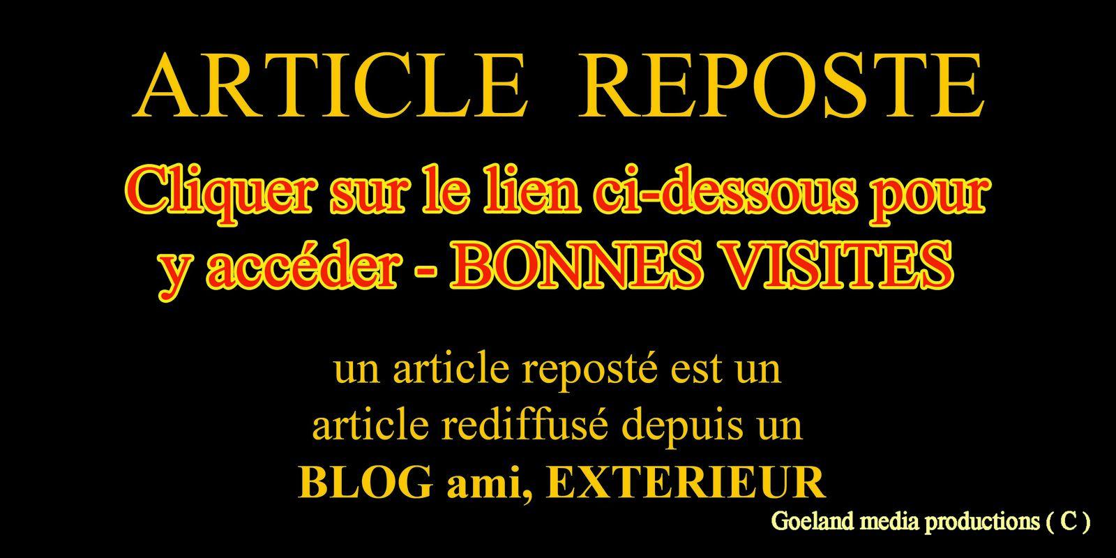 CLIQUER sur le LIEN CI-DESSOUS, pour accéder à l'article plus complet - goelandmedia.prod@gmail.com (c)
