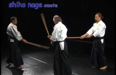 """Aide mémoire ken (sabre) 3- """"autour de shiho nage"""" Joël Roche"""