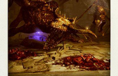 La vignette : Dragon Dogma Dark Arisen