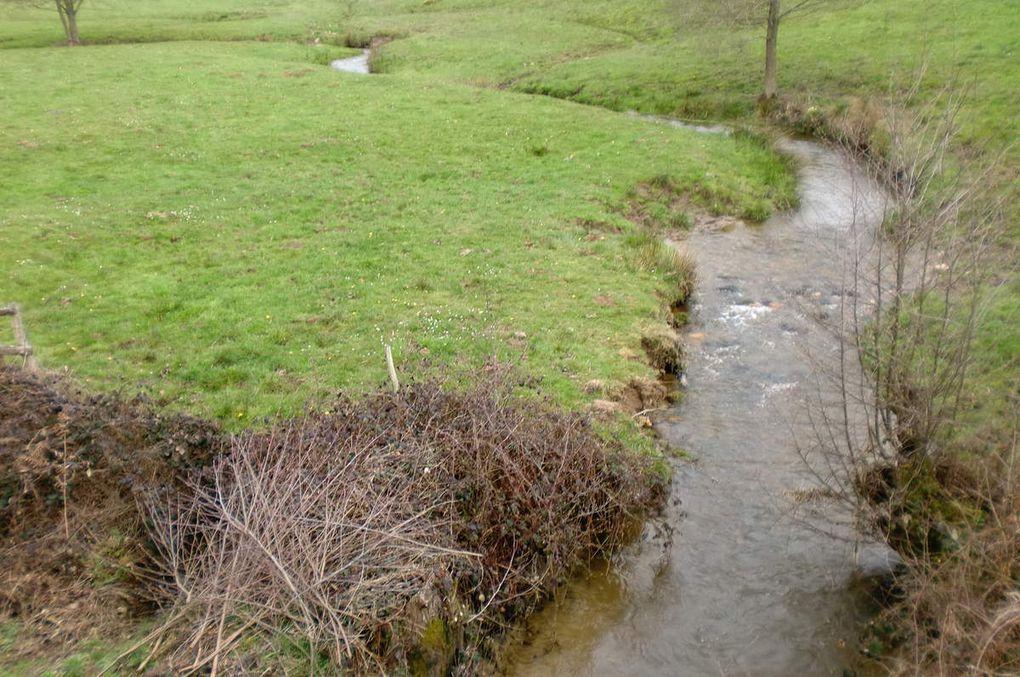 Charmant petit ruisseau Berrichon.