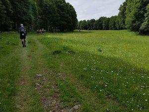 TRAIL DE L'AUBRAC....45kms DE BONHEUR..!!!
