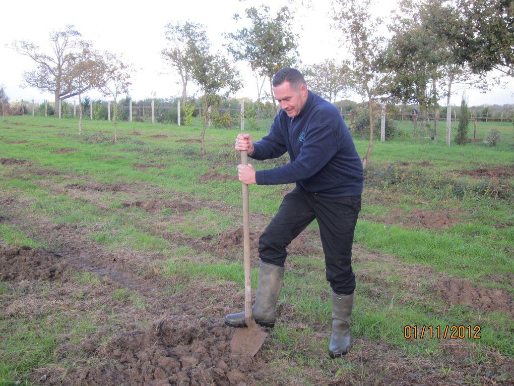 préparation du terrain ou les 150 arbres seront planté avec les élèves de cm2