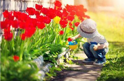 Le jardinage, un bienfait pour l'enfant