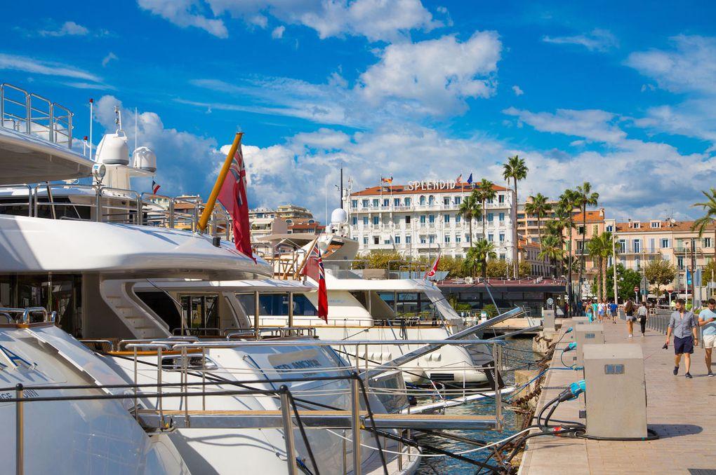 Plaisance – Cannes enregistre un record de réservations de yachts pour cet été