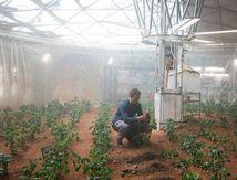 Der Marsianer – Ridley Scott