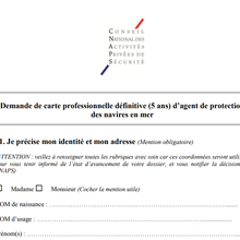 Formulaire de carte professionnelle définitive: Agent de protection des navires