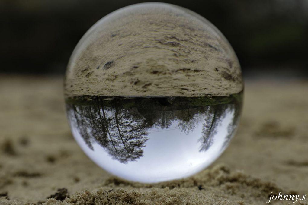 Reflets dans l'eau, reflets de natures mortes (mais pas l'autruche !!)  boule de cristal  Johnny Skebra