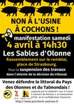 ALERTE POLLUTION  : RASSEMBLEMENT DU 4 AVRIL 2015 AUX SABLES D'OLONNE