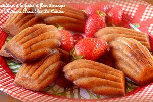 Madeleines de rêve à la fraise et fleur d'oranger