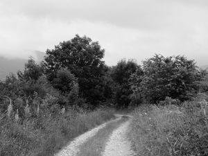Sur les sentiers du Bousquet