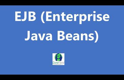 Java Training: - How will you explain the concept of local interfaces?