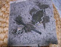 Calligraphies de ronces et morta noir