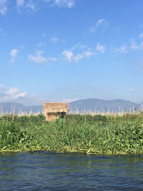 Myanmar : Jour 7, étape de charme, le Lac INLE