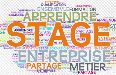 Exemples de conventions ou rapports de stages