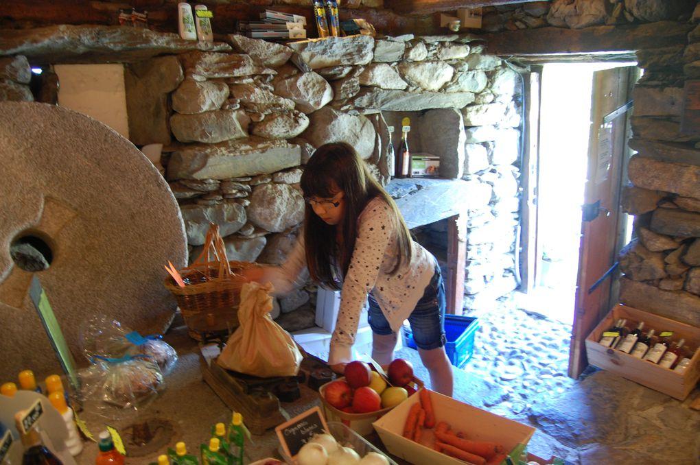 """Estaing est une petite commune du sud-ouest de la France, située dans le département des Hautes-Pyrénées et de la région Midi-Pyrénées. Elle fait partie de la Communauté de communes """"du Val d'Azun""""."""