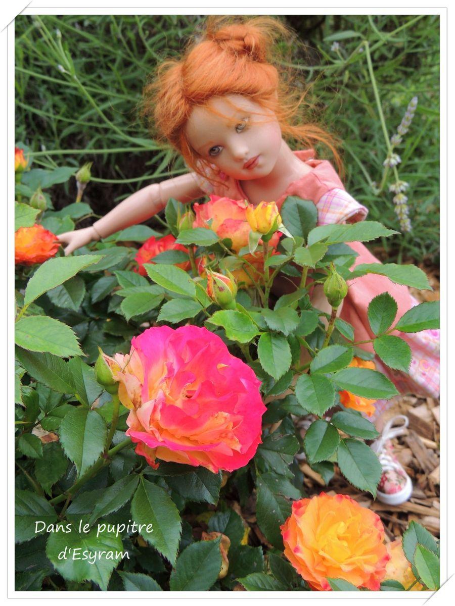 Louise aime les roses ...Et les roses aiment Louise