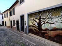 MADÈRE (Portugal 🇵🇹)