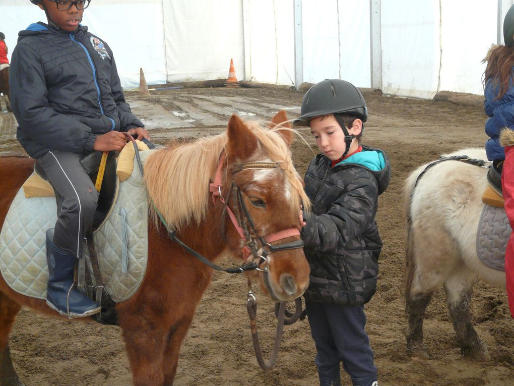 L'EQUITATION au Multisports
