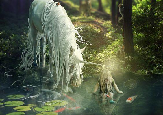 Licorne...et fée papillon