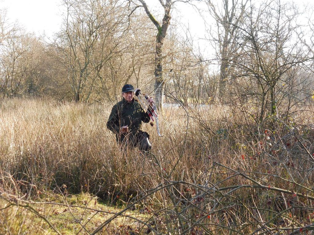 Chasse aux ragondins à l'arc en Brière