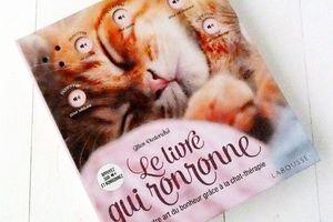 Le Livre qui Ronronne, Cultivez votre art du bonheur grâce à la Chat Thérapie #Livre à gagner