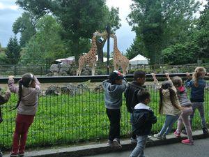 Centre Jean zay - sortie zoo de Maubeuge - 28 juillet