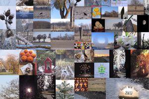 Fotorückblick Januar
