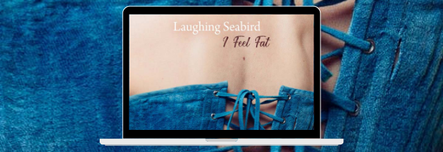Laughing Seabird, le clip d'I Feel Fat | nouvel album The Transformation Place