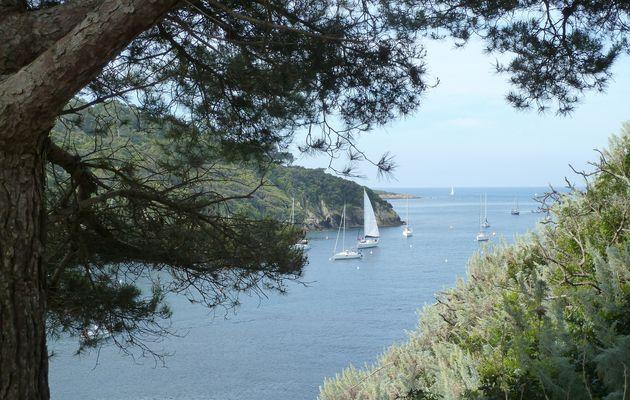 Randonnée sur l'île de Port Cros - 4/..