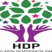 Grève de la faim dans les prisons turques: note d'information du HDP - Analyse communiste internationale