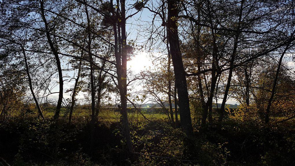 Cassagne - Balade d'automne le long du Lens