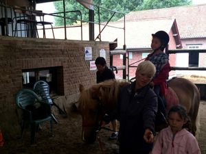 Stage équitation Comines (28/07-01/08/2014)