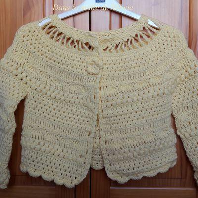 vetements (des gilets) et accessoires (mitaines, sacs, étole) au crochet