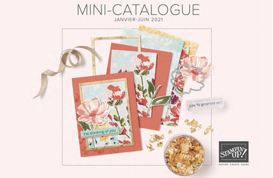 Sortie officielle du mini catalogue Stampin'Up!  Printemps 2021