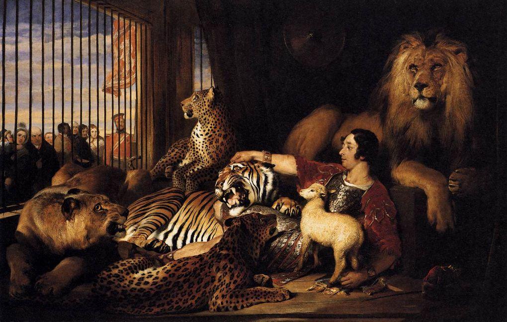 Album - Le musée du Loup