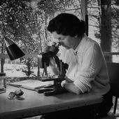 """Rachel Carson et le """"Printemps silencieux"""" : la biologiste qui avait prédit la catastrophe écologique à venir"""