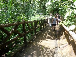 Costa Rica - Jour 6 : Arenal - La cascade de la Fortuna