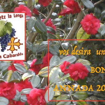 2017 : Fasètz la Lenga fa 20 ans !