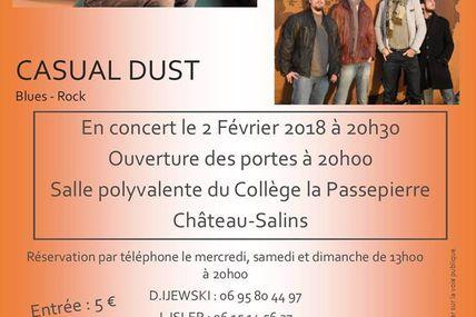 Chateau-salins E'Pic Concert Alex toucourt et Casual Dust le 2 février 2018