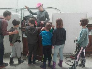 Au centre equestre de Tollevast