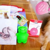 CONCOURS : Gagne ta Woufbox